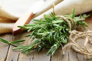 Hälsa och näring